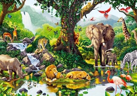 10 Ejemplos De Biodiversidad Y Definicion Yavendras